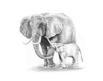 R&L Sketching made easy mini elephant