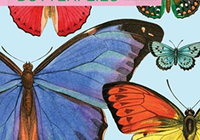 BUTTERFLY BOOK W CD
