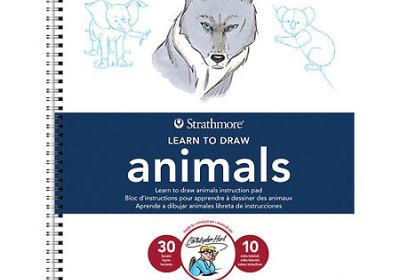 LEARNING TO DRAW ANIMALS WIREB