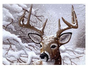 PBN JR LG Dancing Snow