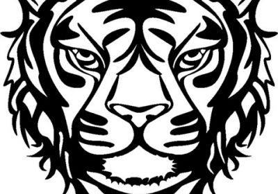 Marabu Wild Tiger 12