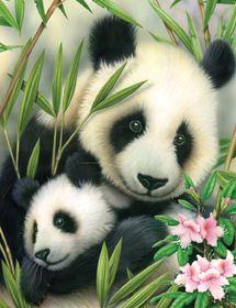 R&L Paint by Number Jr. Panda & Baby