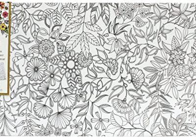 Johanna Basford 12 x 24 Coloring Canvas Floral Landscape