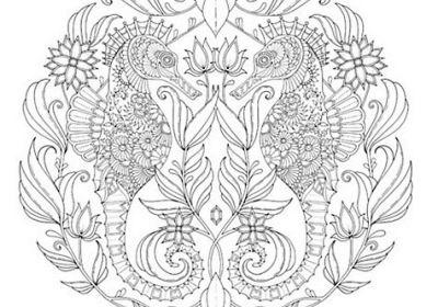 Johanna Basford Coloring Canvas Owl 12 x 12