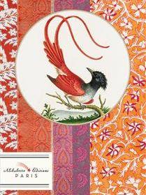 BB the red bird