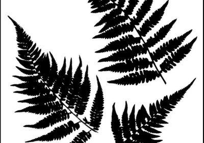 6 x 6  Stencil Mini Ferns